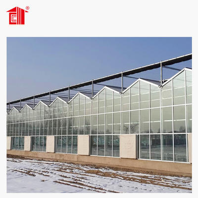 Prefab Greenhouse with Sandwich Panel & Steel Structure Lida Group