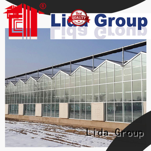 Lida Group glass greenhouses for sale company for agricultural planting